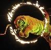 Цирки в Горелках